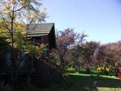 Cabaña Oasis de la campana, AV. LOS POTROS PARCELA 16 PELEHUITO, 2310000, Ocoa