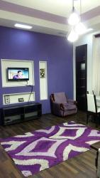 Apartment on Shovkat Alakbarova 11, Shovkat Alakbarova 11 apt.13, AZ1000, Baku