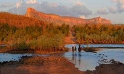 Home Valley Station, Station Homestead, Via Gibb River Road, East Kimberley, 6743, 温德姆