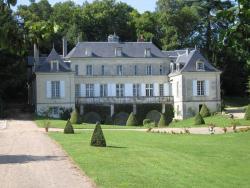 Chambres d'Hôtes Le Château de la Plante, 31 route de la Plante, 86540, Thuré