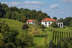 Weingut Hirschmugl - Domaene am Seggauberg, Seggauberg 41, 8430, Leibnitz
