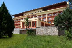 Wellness Resort Energetic, Rekreacni 1037, 75601, Rožnov pod Radhoštěm