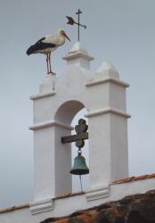 Finca Santa Marta, Pago San Clemente, s/n, 10200, Pago de San Clemente