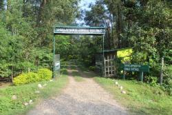 Suklaphanta Jungle Cottage, Majhgaun, Bhimdatta,, 00977, Bahāsi