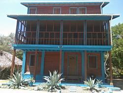 Blue Agave, Cashew Tree Crescent 1072,, Maya Beach