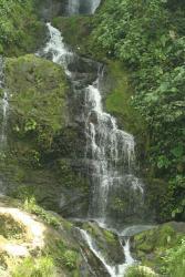 Adrenalina-Pacuare Overnight, Apdo: 304-7150, 30501, Turrialba
