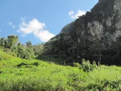 Ban Napia - Plain of Jars homestay, Muang phaxay district,, Ban Naphia