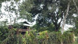 Lapas rojas Lodge, la palma de puerto jiminez  peninsula de osa, 60101, Playa Blanca