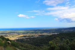 OfcorsIcan, 8 route de vignale, 20290, Borgo