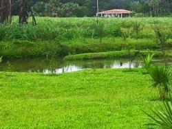 Pousada Aconchego da Serra, Rodovia ce 187, Sítio Brejo Grande - Viçosa do Ceará, 62300-000, Viçosa do Ceará