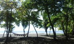 Dos Palmas Beach Front, Playa Matapalo, 60602, Matapalo
