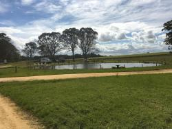 Coonawarra Bush Holiday Park, Lot 1 Comaum School Rd, 5277, Glenroy