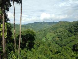 Ocean View Condo 7-1, Costanera Sur, 00001, Dominical