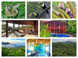 House of Jupiter villa, 1.3 kilometers south on Ridge rd Lagunas de Baru,, Dominical