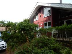 Eichhörnchen I,  32699, Bremke