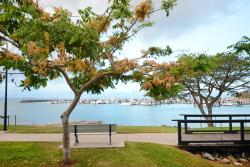 Airlie Marina Views, 115 Shingley Drive, 4802, Cannonvale