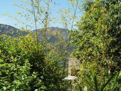 Casa Mezanaccia, Hameau de poggio, 20112, Santa-Lucia-di-Tallano