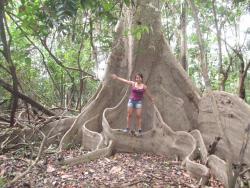 Jungle Explorer Camp, Pacaya Samiria, Rio Pucate, Comunidad Buenos Aires,, Nauta