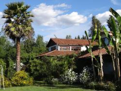 Casa Chueca - DiVino, Viña Andrea s/n sector Alto Lircay, 3460000, Talca