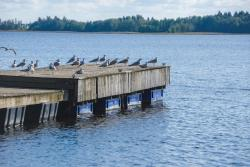 Mokko Beachhouse, Järve, 48419, Kuremaa