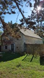 Motu Grange, 37 Avenue de Montignac, 24570, Condat-sur-Vézère