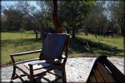 Killa Sumaj cabañas, General Güemes 909 hornerito, 4401, Vaqueros