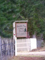 Quamby Pines Chalet, 521 Quamby Brook Rd., 7304, Quamby Brook