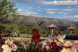 Cabañas Alma de la Sierra, Los aromos 1400, 5883, Carpintería