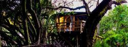 Reserva los Bollenes, Ex Hacienda Quivolgo, S/N, 3560000, Constitución