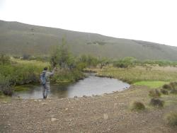 Piuke Mapu Patagonia Hostel, Av. Soberania Argentina al 200, 9217, Cholila
