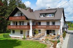 Gasthof Pension Waldfrieden, Schneebergweg 7, 95682, Brand