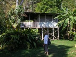 Bolita Rainforest Hostel and Cabinas, 700 m to the right of the phone booth.,, Dos Brazos
