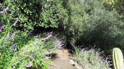 Cabaña de Adobe en Lago Rapel, Parcela 1, Estero Pulin, Lago Rapel,, Lago Rapel