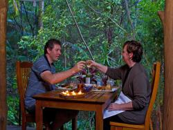 Mt Warning Rainforest Retreat, 112 Mt Warning Road, Mount Warning, 2484, Uki