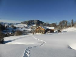 Ferienhof Dürlinde, Dürlinde 60, 6952, Hittisau