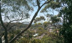Ocean View Narrabeen Apartment, 86 Woorarra Avenue, 2101, Davidson