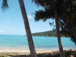 St Bees Island Resort, 1 Island St,  St Bees Island, Queensland. P.O. Box 11368 Caneland,, 4740, Basil Bay
