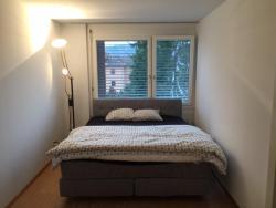 Apartment Simon 5, Simonweg 5, 5415, Baden