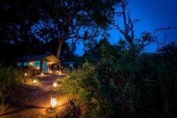 Xobega Island Camp, Gcobega Island, Okavango, Moremi Game Reserve,, Ngindi Island