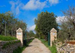 Es Moli de Son Maiol, Son Maiol s/n Apt. 126, 07320, Santa Maria del Camí