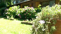 Las Violetas, Las Violetas 232, 7108, Costa del Este