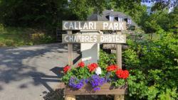 Callari Park, 50 Chemin Lohidoy, 64130, Barcus