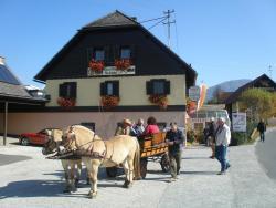 Radgasthof Schütz - Restaurant Camping Wellness, Kirschentheuer 2, 9162, Ferlach