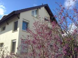 Lovely Basel Apartment, 90 Steinbühlweg, 4123, Allschwil