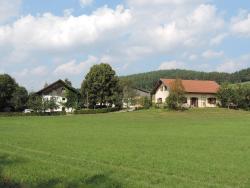 Wastlhof, Am Lerchenfeld 7, 93489, Schorndorf