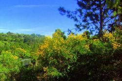 Awesome Country House, Rua Doutor Altair Martins 2195, 06710-040, Cotia