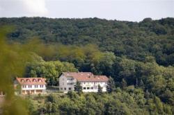 Burg-Hotel, Moschellandsberg 2, 67823, Obermoschel