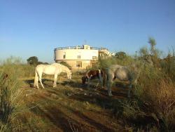 Hotel Paraje La Lambra, Carretera Canena-Arquillos km.3, 23430, Rus