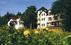 Gastinger Hotel-Restaurant, Ilmenauer Straße 21, 98711, Schmiedefeld am Rennsteig