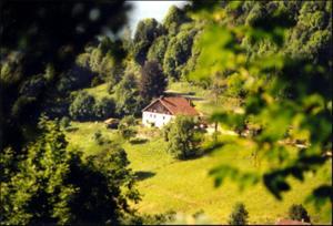 Chambres d'hotes La Ferme du Vieux Sapin La Bresse